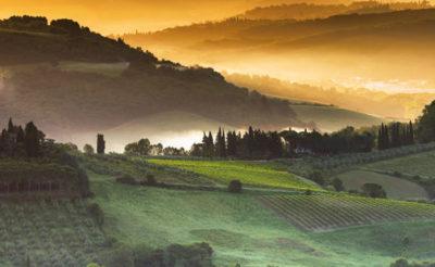 viticoltori